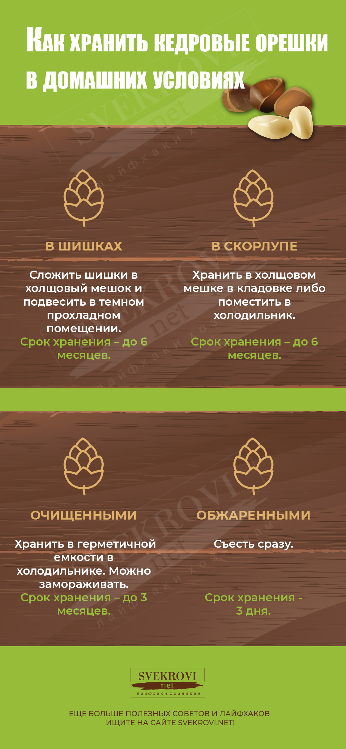 Хранение кедровых семян
