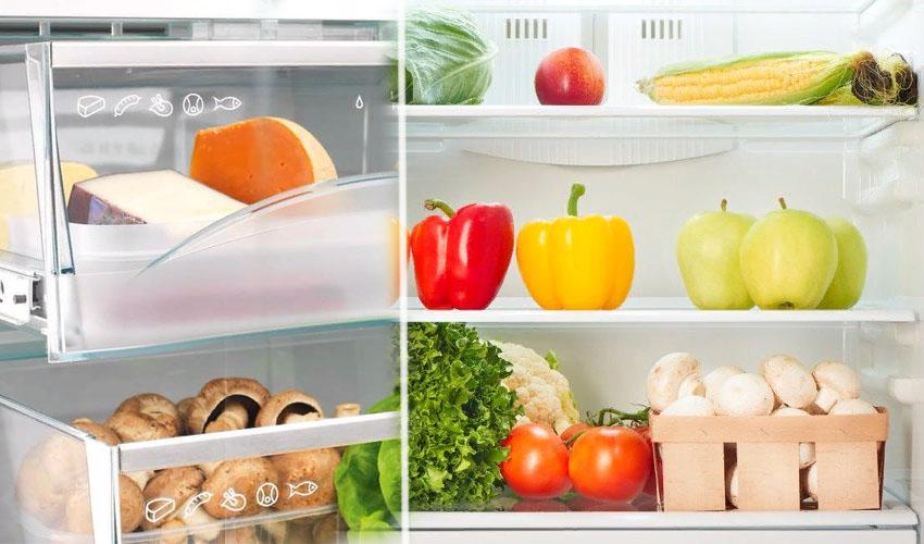 Ящик для грибов в холодильнике