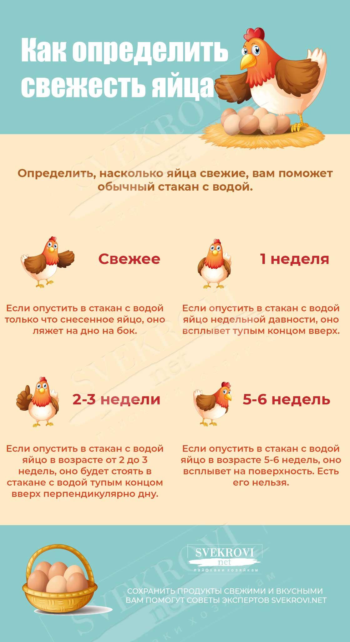 Узнать свежесть яйца курицы