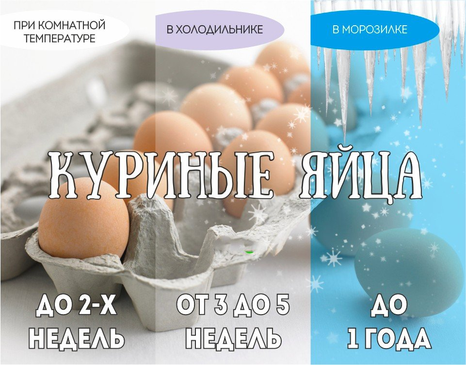 Сколько хранятся яйца