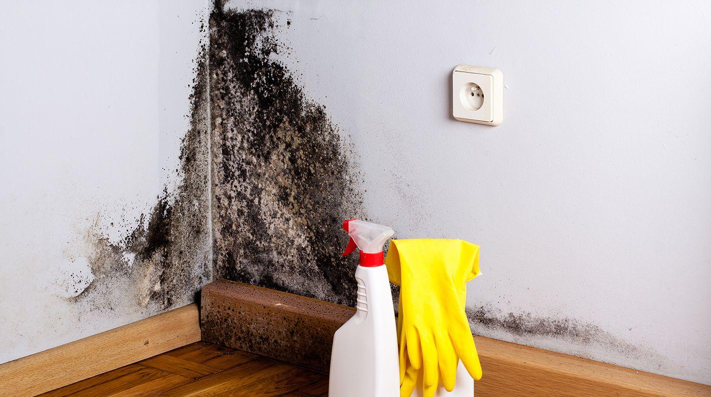 Чем обработать стены, чтобы избавиться от плесени и грибка на балконе?